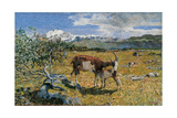 Alp in May Giclee Print by Giovanni Segantini