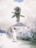 Along the Road, the Bahamas, 1885 Giclee Print by Winslow Homer