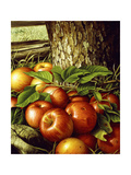 Apples and Tree Trunk, 1891 Giclee Print by Levi Wells Prentice