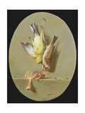 A Trompe L'Oeil of Dead Songbirds Giclee Print by Jean Joseph Xavier Bidauld