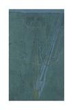 Shadow, 1896 Giclée-Druck von Charles Rennie Mackintosh