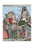 The Nuremberg Chronicle Giclee Print by Hartmann Schedel