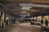Fish Market, Lowestoft, Suffolk Photographic Print