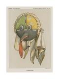 A Powamu Mask Giclee Print