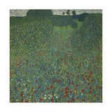 Field of Poppies, 1907 Giclee Print by Gustav Klimt