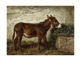 Donkey at Crib Giclee Print by Filippo Palizzi