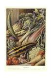 Vegetables Giclee Print