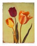 Concerto Verde I Schilderijen van Amy Melious