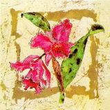 Orchidee Kunstdrucke von A. Vega