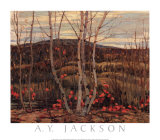 Maple and Birches Prints by A. Y. Jackson