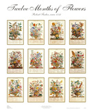 Twelve Months of Flowers Art by Robert Furber