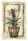 Pina-Ananas Kunst von A. Vega