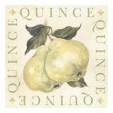 Quince Posters by Michael Alexander