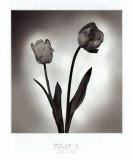Tulip I Schilderij