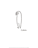 Uggla Poster av Pablo Picasso