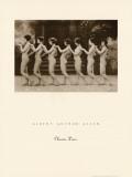Chorus Line Prints by Albert Arthur Allen
