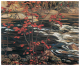 The Red Maple Print by A. Y. Jackson