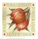 Pomegranate Poster by Michael Alexander