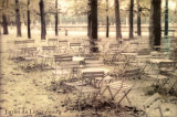 Jardin du Luxembourg Art by Hubert Grooteclaes