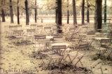 Jardin du Luxembourg Poster by Hubert Grooteclaes