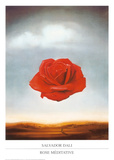 Rose m&#233;ditative Affiches par Salvador Dal&#237;