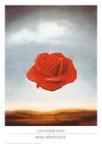 瞑想的なバラ, 1958 高品質プリント : サルバドール・ダリ