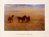 Stuten und Fohlen Poster von Colleen Howe