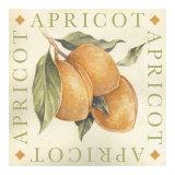 Apricot Print by Michael Alexander