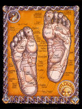 Reflexology Poster by Robert Rosenthal