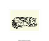 Katzen Detail 1908 Siebdruck von Franz Marc