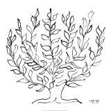 低木(Le Platane) 1951年 セリグラフ : アンリ・マティス