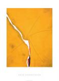 Sesame, c.1970 セリグラフ : ヘレン・フランケンサーラー