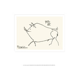 Schwein Siebdruck von Pablo Picasso