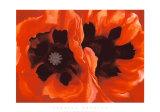 Oriental Poppies, c.1928 Zeefdruk van Georgia O'Keeffe