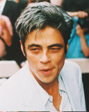 Benicio Del Toro Photo