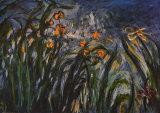 Irises (detail) Posters av Claude Monet