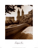 Central Park Bridge I Plakater af Christopher Bliss
