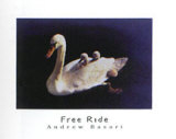 Free Ride Prints by Andrew Basari