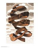 Rinde Poster von M. C. Escher