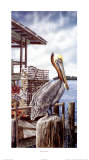 Pelican Key Print by James Harris