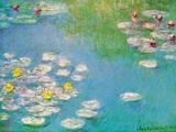 Water Lilies, c.1908 (detail) Affiches van Claude Monet