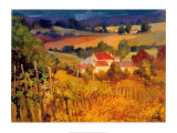 Vineyard Hill Print by Philip Craig