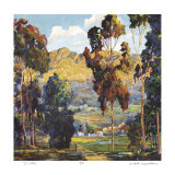 Pauma Valley Collectable Print by Donald Munz