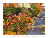 Let the Sunshine in Prints by Phyllis Horne