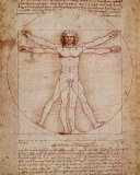 Vitruvian mies (Vitruvian Man), noin 1492 Posters tekijänä  Leonardo da Vinci