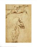 Esbozo de un caballo Reproducción por Leonardo da Vinci