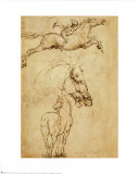 Sketch of a Horse Art by Leonardo da Vinci 