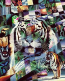 Wildlife Mosaics Tiger Prints by Daniel Renn Pierce