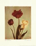 Spring Color IV Julisteet tekijänä Amy Melious