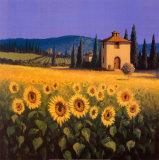 Calore dorato Poster di David Short